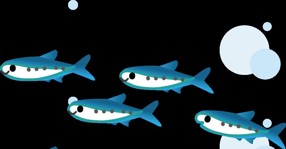 すべての講義 お魚の絵 : オタクなお宅のユルユルブログ