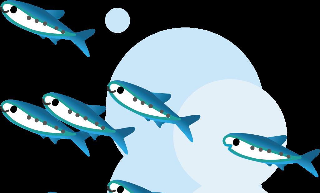 魚のイラスト・無料イラスト ... : 魚のイラスト 無料 : イラスト