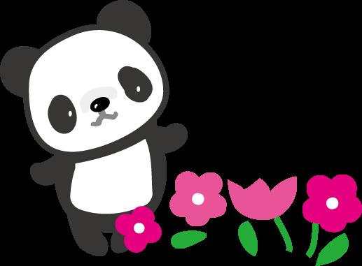 パンダの画像 p1_21