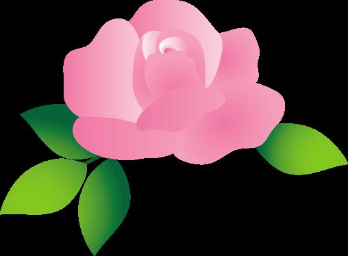 可愛いバラ 薔薇 のイラスト 無料イラスト フリー素材