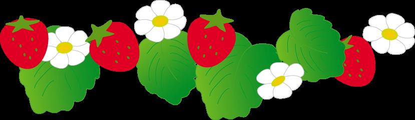 「苺イラスト 無料」の画像検索結果